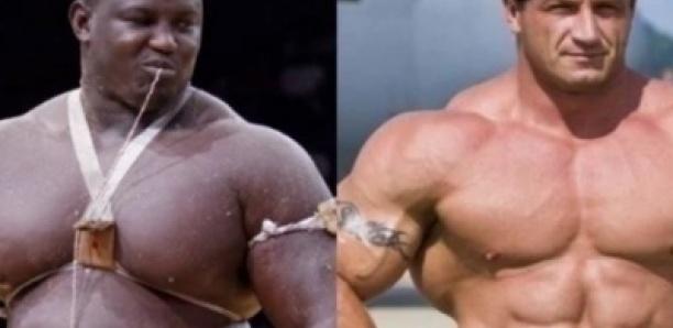 Retour en MMA : Bombardier va défier Mariusz Pudzianowski, 5 fois homme le plus fort au monde