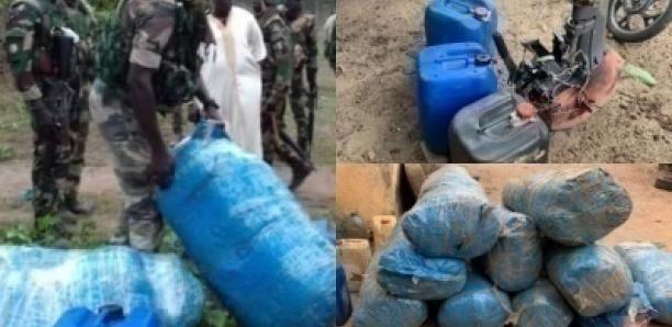 Niafrang : 237 kilos de chanvre indien saisis