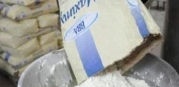 Le lait en poudre européen inonde l'Afrique : catastrophe annoncée pour les éleveurs ?
