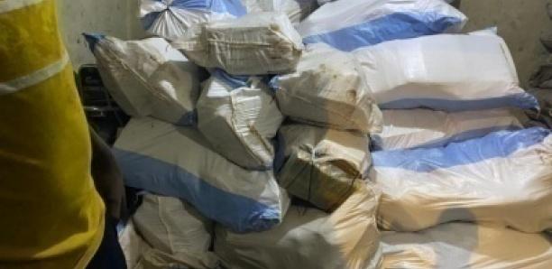 Une cargaison record de 2,2 tonnes de chanvre indien saisie par les Douanes