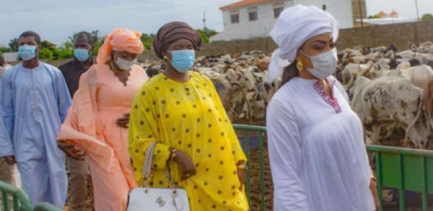 Touba 2021: Sokhna Aïda visite son troupeau pour le Magal avec ses coépouses