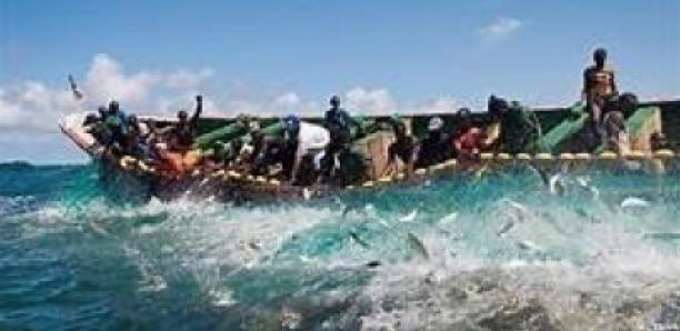 Guinée-Bissau : 68 pêcheurs sénégalais appréhendés au large