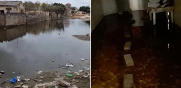 Banlieue : Des découvertes macabres dans les zones inondées