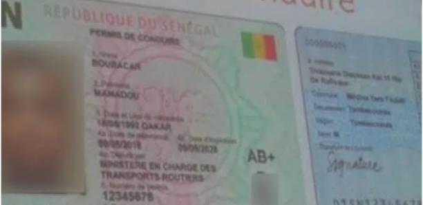 Transport : 1780 permis saisis par la Gendarmerie durant le mois d'août