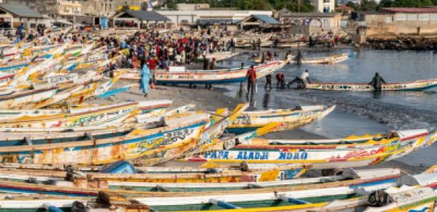 Espagne : Un réseau de vente de moteurs de pirogue volés démantelé