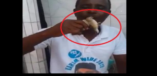 Des militants du PDS « maudissent » Macky avec des oiseaux